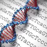 چگونه میتوان از ابتلا به بیماریهای ژنتیکی و ارثی جلوگیری کرد؟