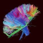 بررسی و شناخت طراحی گرافیک در کاربرد موسیقی