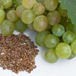 با مصارف درمانی روغن هسته انگور بیشتر آشنا شوید
