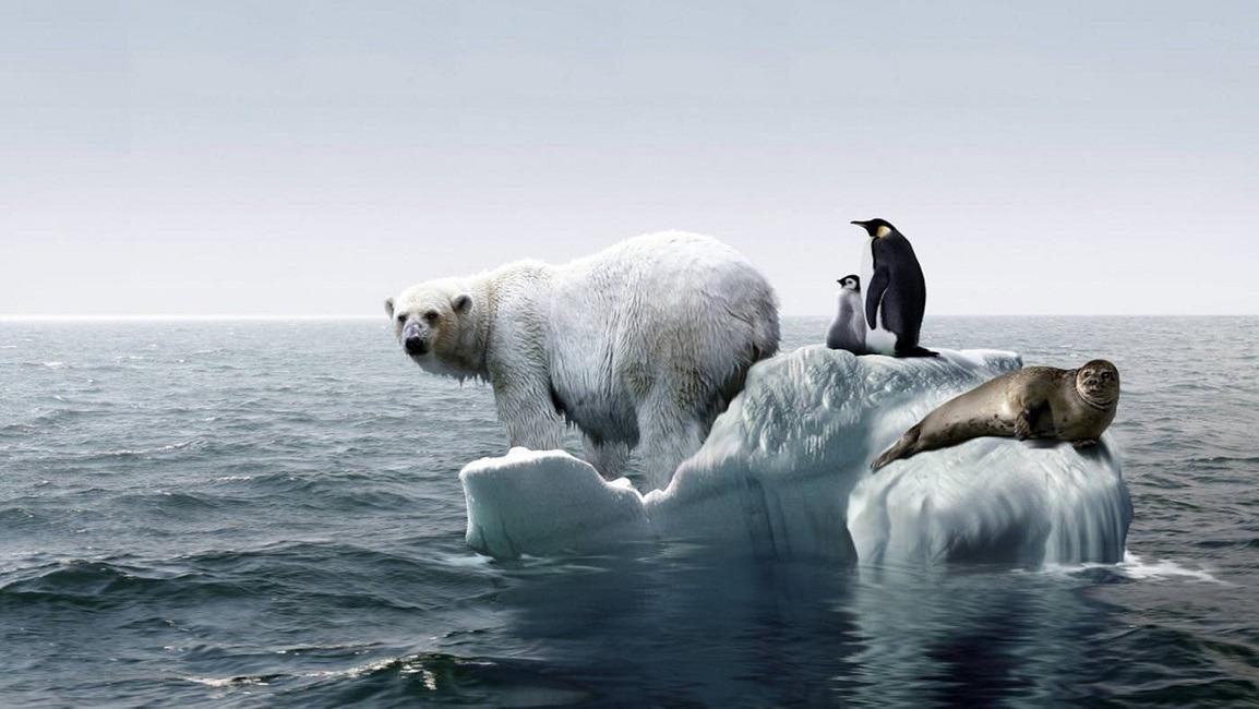 چه ارتباطی میان گرمایش جهانی و بحران آب وجود دارد؟