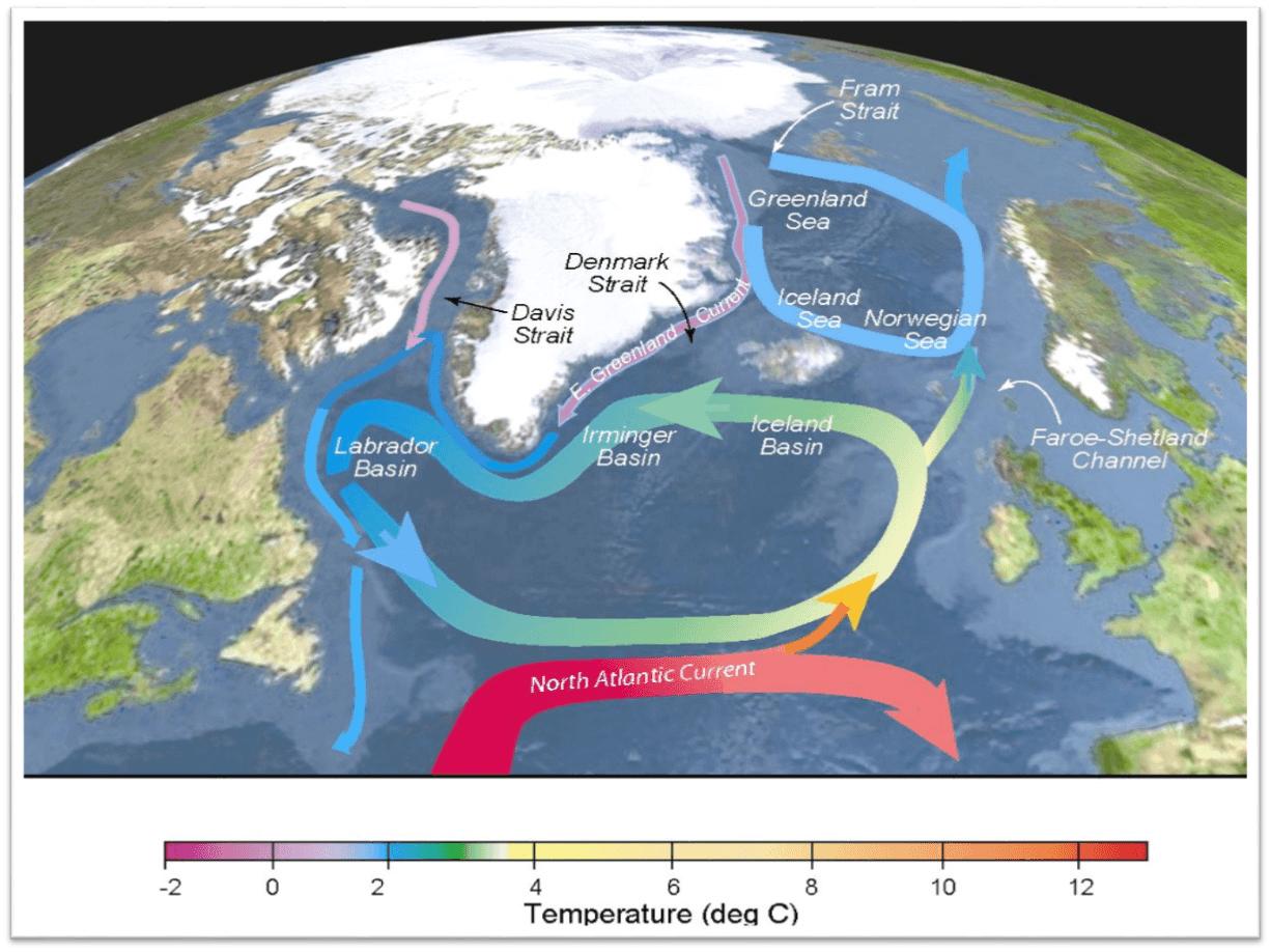 شکل -4 شرایط همرفت متوقف- نگاه دقیقتر و واقعی بینانه تر در وضعیت گردش جریانهای سطحی در زمان توقف این چرخه در اطلس شمالی. نوارهای توپرهمان جریانهای سطحی هستند، نوارهای خطچین جریان متراکم عمیق آب را نشان میدهند. رنگ و درجه حرارت تقریبی آب را به تصویر میکشد