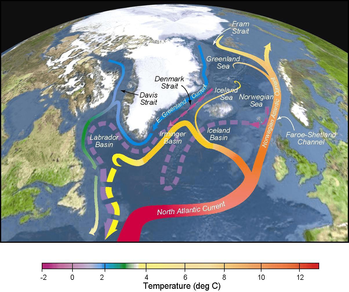 شکل -3 شرایط همرفت فعال- نگاه دقیقتر و واقعی بینانه تر در وضعیت گردش جریانهای سطحی حال حاضر در اطلس شمالی. نوارهای تو پر همان جریانهای سطحی هستند، نوارهای خطچین جریان متراکم عمیق آب را نشان میدهند. رنگ و درجه حرارت تقریبی آب را به تصویر میکشد