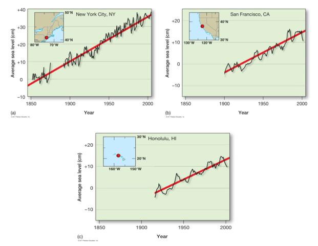 شکل:3 افزایش سطح آب دریاها تهدیدی برای سواحل با شیب ملایم. مدلها افزایش بین 0.5 و 1.4 نتری 1.6 فوت تا سال 2100 را پیشبینی میکند.