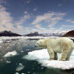 اقلیم چیست و تغییر اقلیم یعنی چه؟ بخش اول