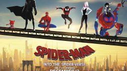 انیمیشن مرد عنکبوتی: به درون دنیای عنکبوتی (Spider Man: Into the Spider Verse) را ببینیم یا نه؟