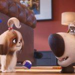 تیزر انیمیشن زندگی مخفیانه حیوانات خانگی ۲