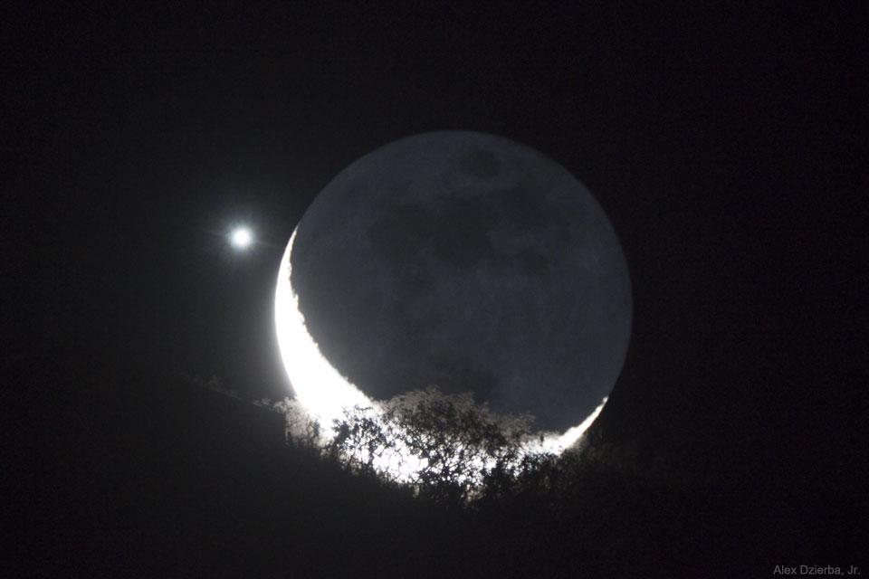 تصویر روز ناسا: ماه، ناهید، درخت