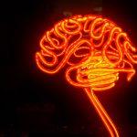 چه میشود اگر از تمامی ظرفیت مغزتان استفاده کنید؟