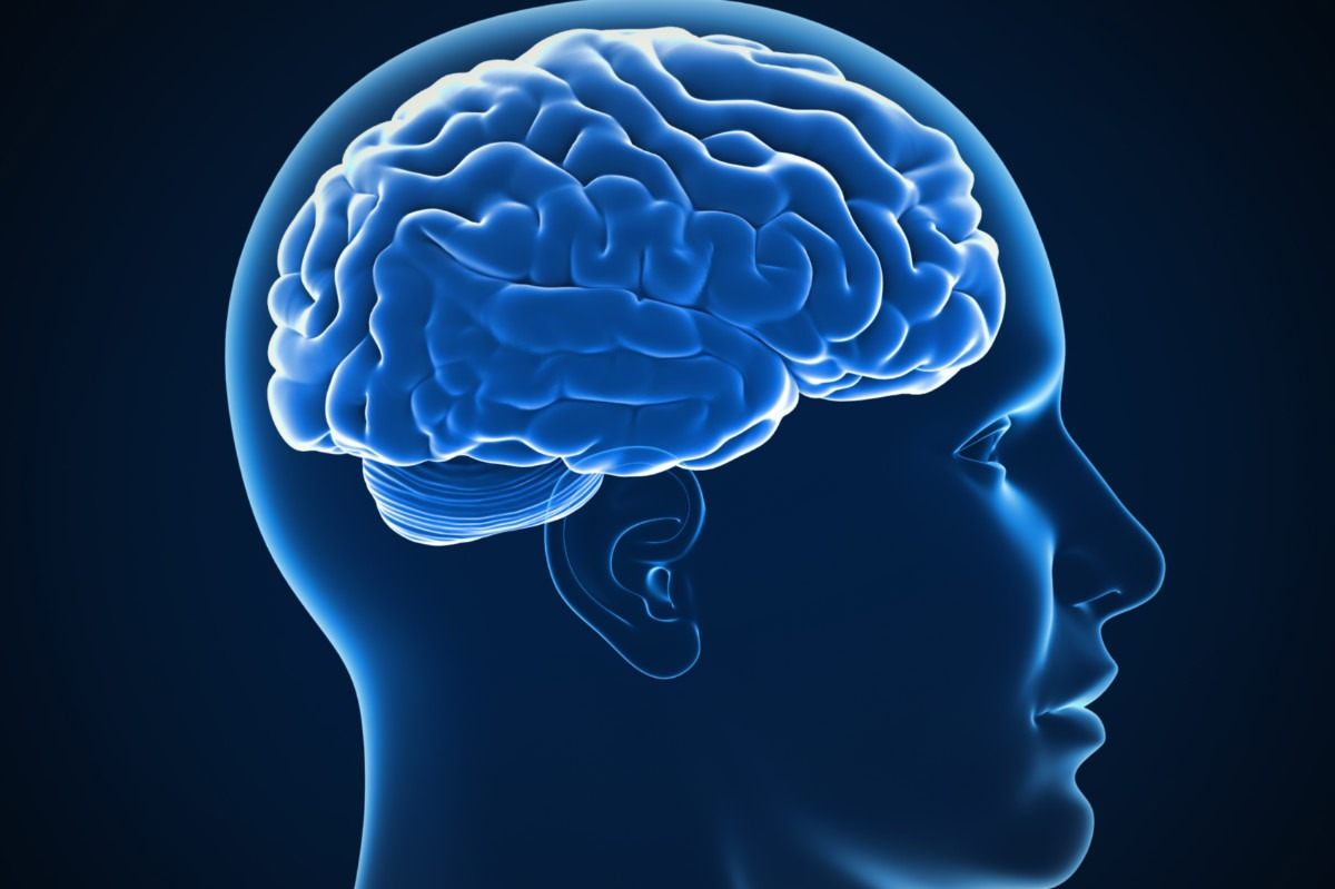 آیا انسان از همه قدرت و توانایی مغزش استفاده نمیکند؟