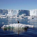 آب شدن یخهای قطبی کره زمین چه تاثیری بر سیاره ما دارد؟