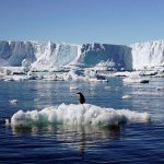 چه میشود اگر تمامی یخهای دنیا ذوب شوند؟