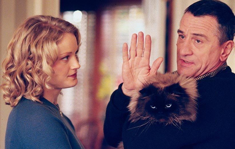ملاقات با والدین حیوانات خانگی ۲۰۰۰