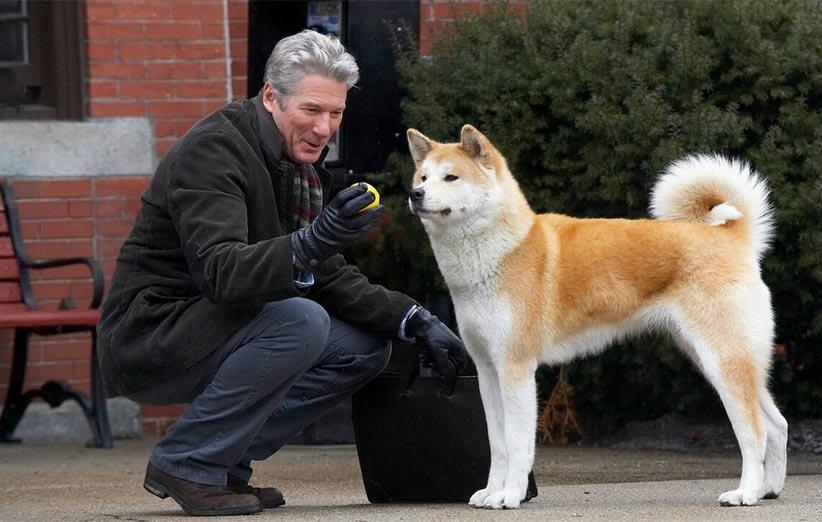 هاچی داستان یک سگ حیوانات خانگی ۲۰۰۹