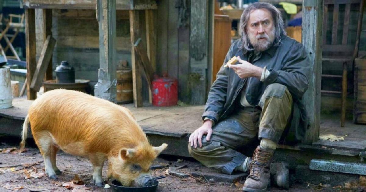 بهترین فیلم های نیکلاس کیج بر مبنای امتیازات راتن تومیتوز